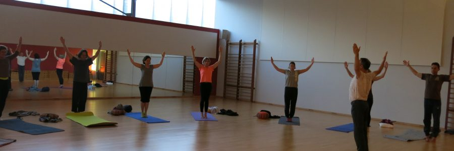 Hatha Yoga Meximieux